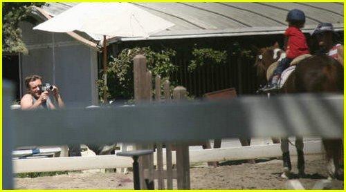 jude law horses12280651