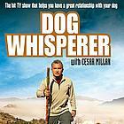 dog whisperer dvd01