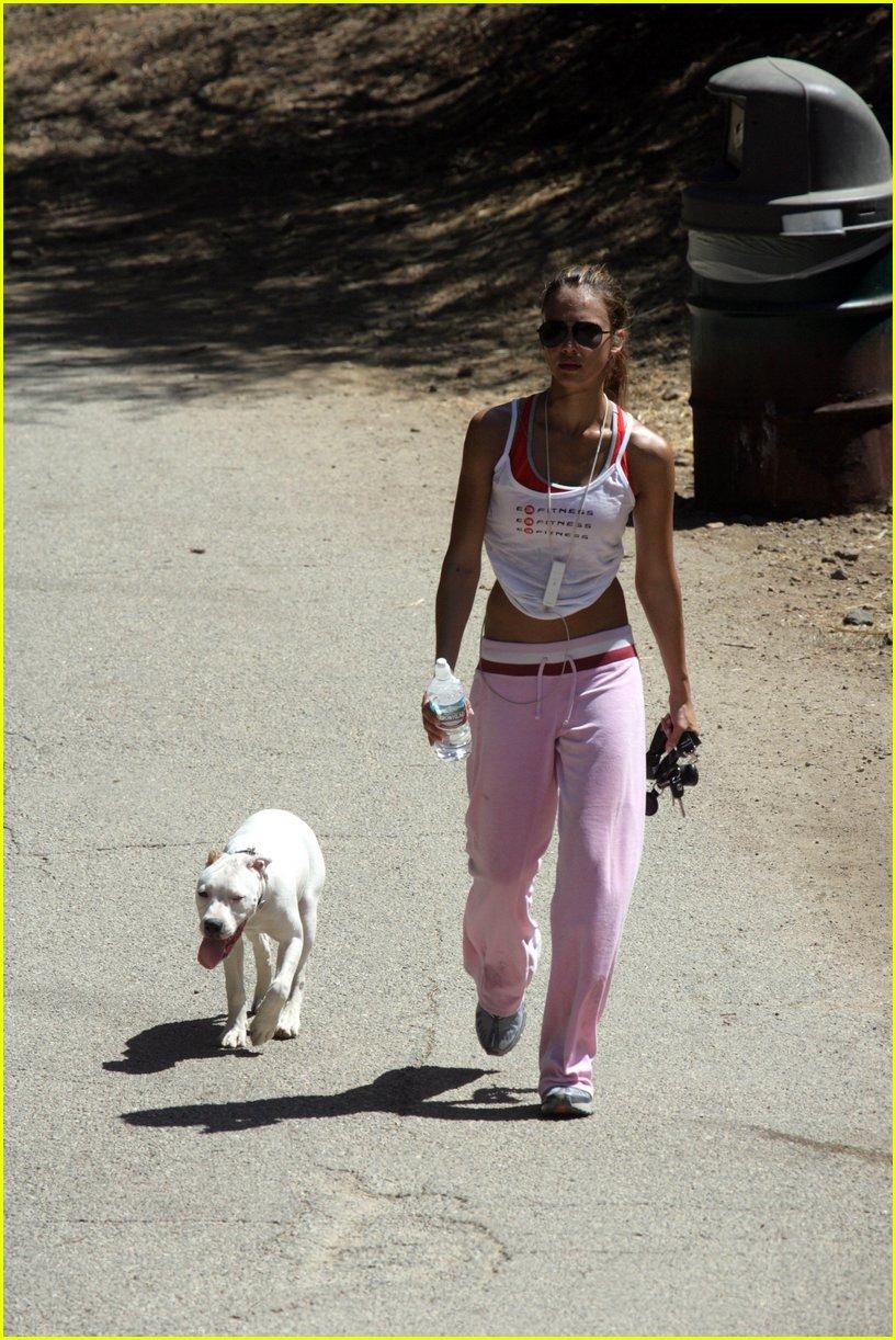 Kathy S Dog Walking