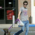 adam brody dog 02