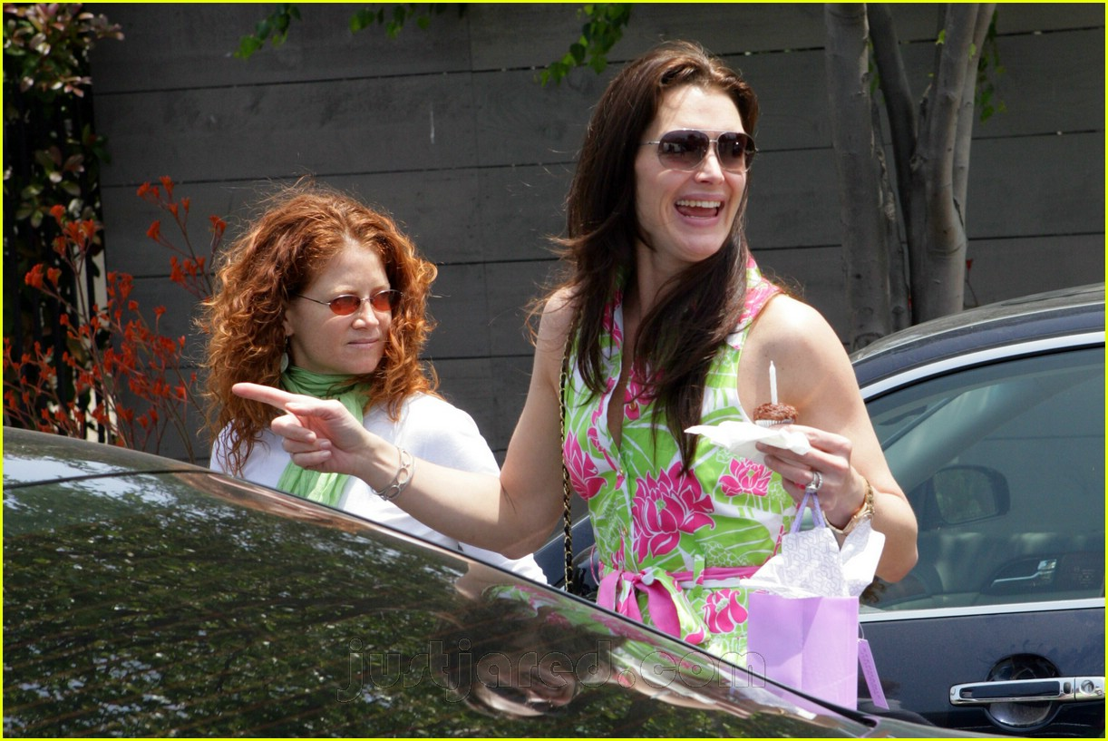 04 brooke shields bridget moynahan baby shower176911