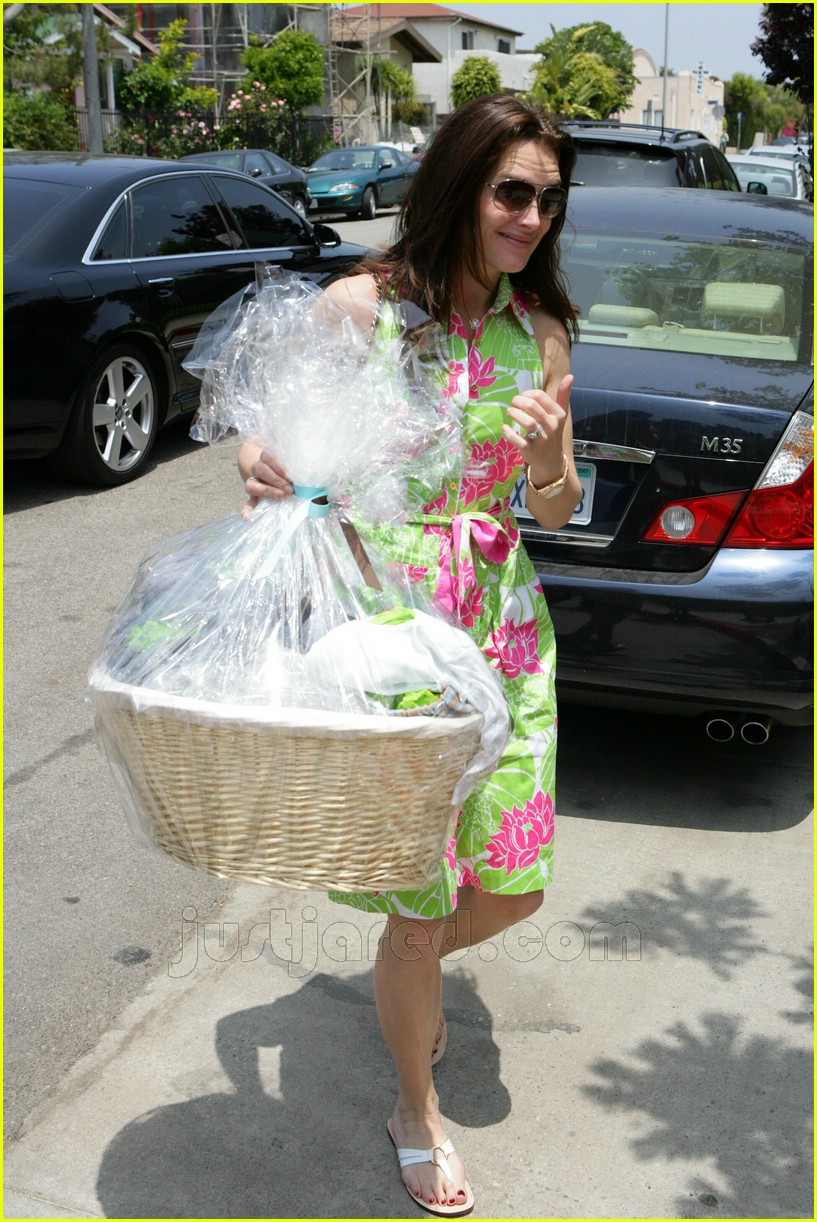 brooke shields bridget moynahan baby shower 05176981