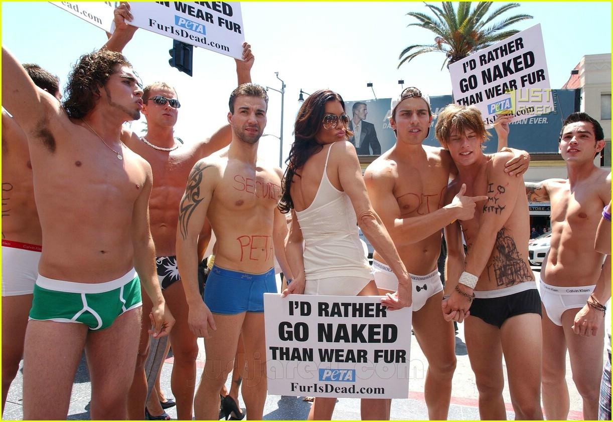 janice dickinson naked models 06