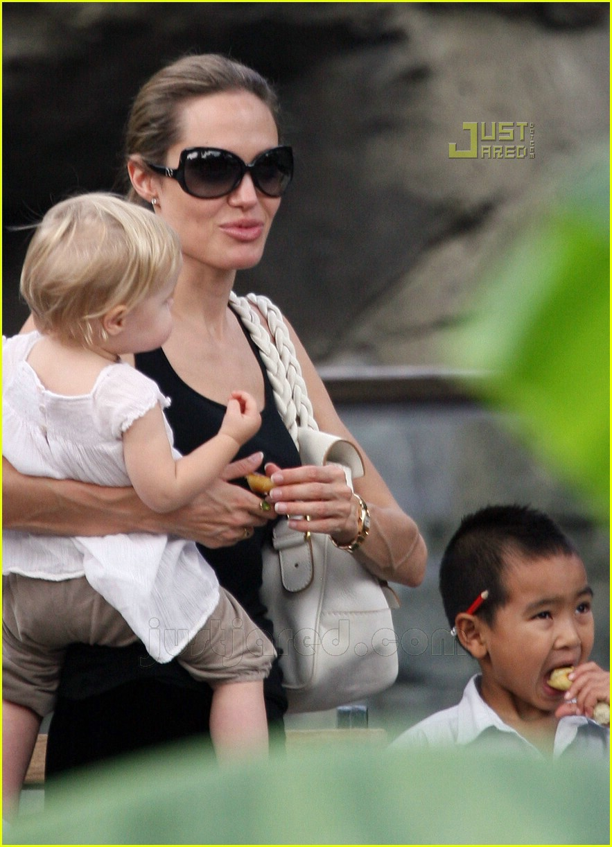 angelina jolie petting zoo 11