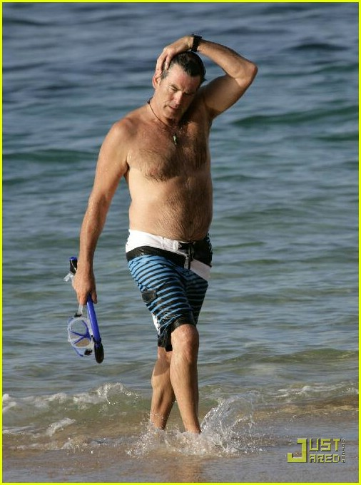 pierce brosnan shirtless 22