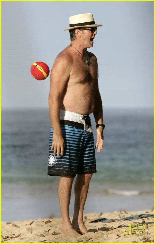 pierce brosnan shirtless 29