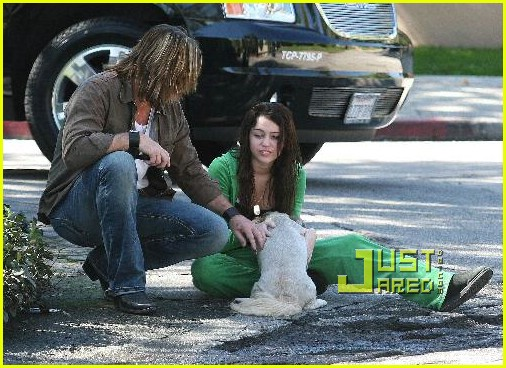 miley cyrus stray dog 10