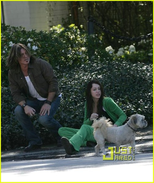 miley cyrus stray dog 17