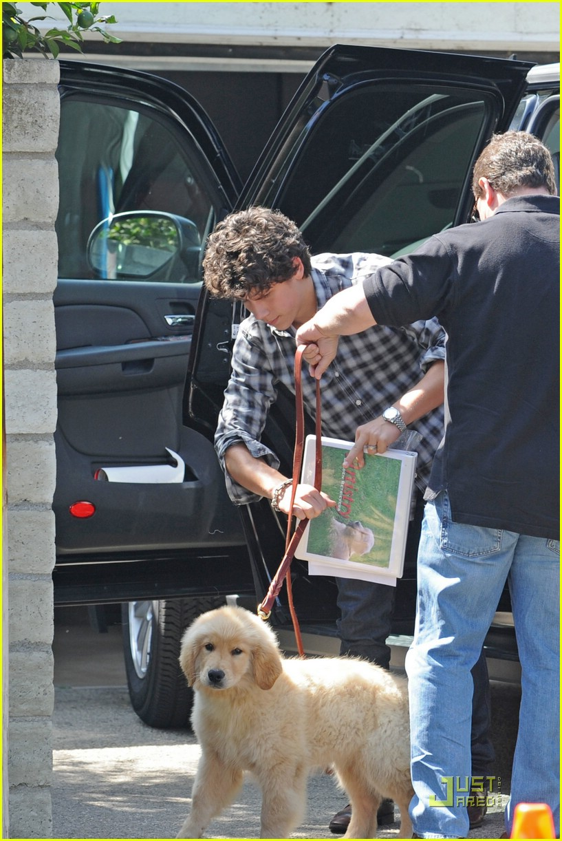 nick jonas elvis dog 01