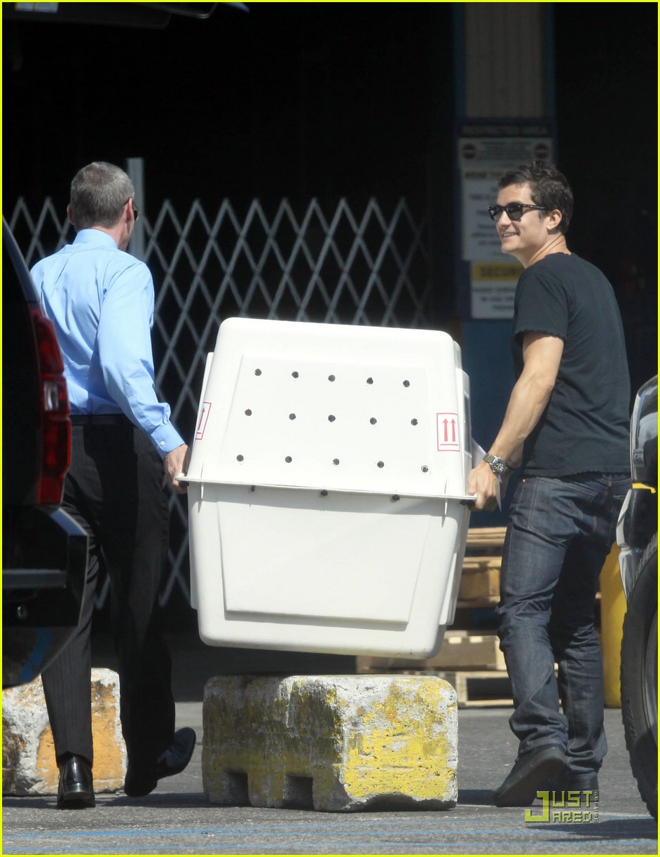 orlando bloom miranda kerr sidi dog 02