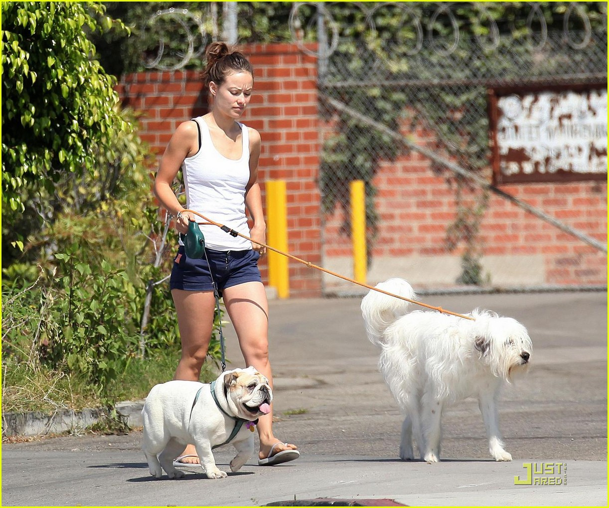 olivia wilde pooch passion 08