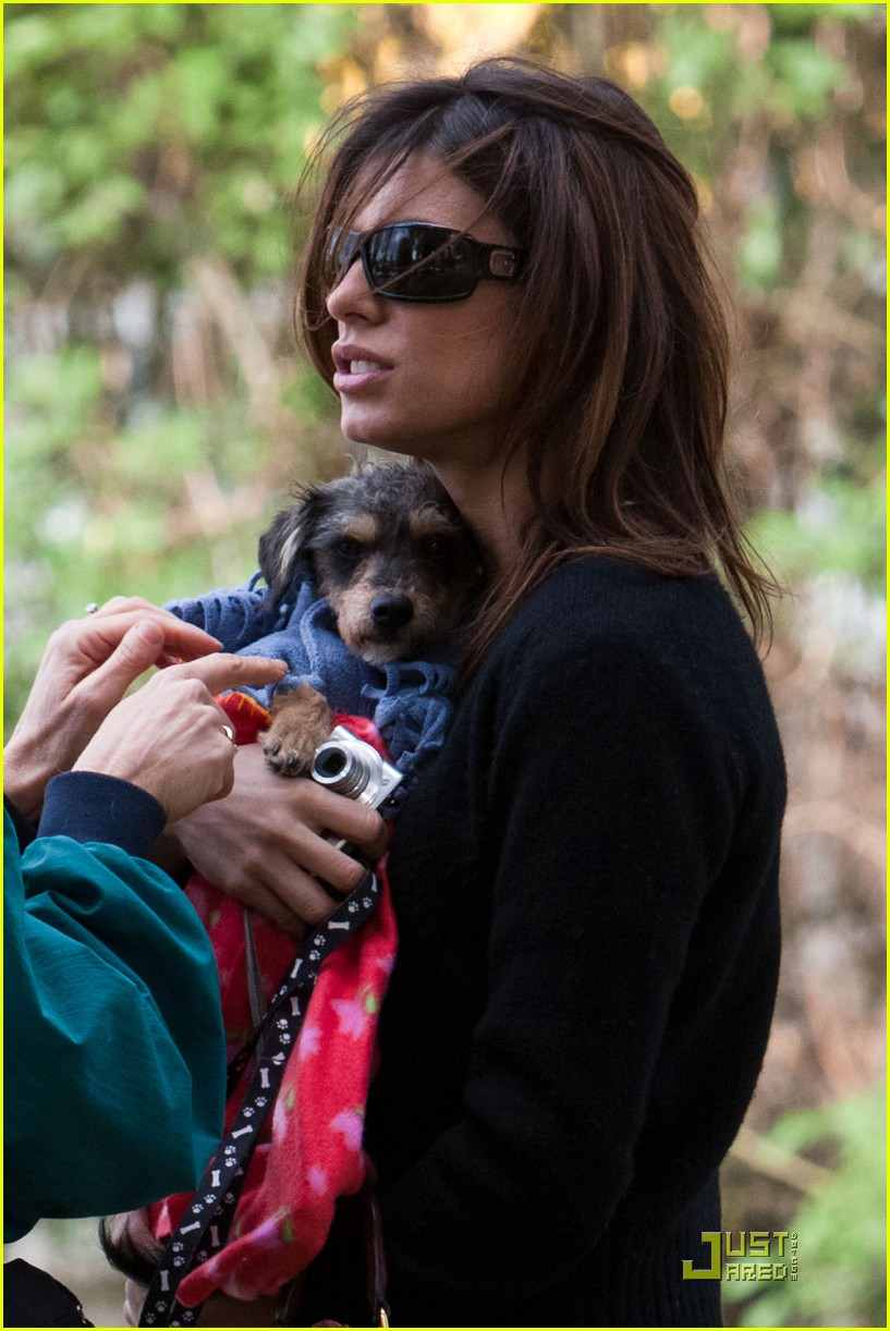 elisabetta canalis adopts a dog 05