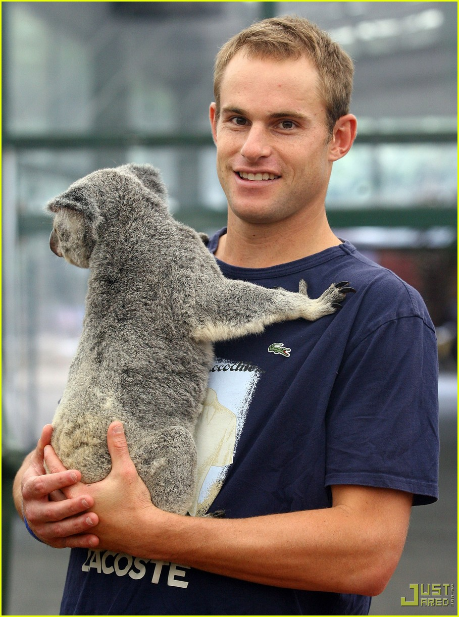 andy roddick brooklyn decker koala couple 03