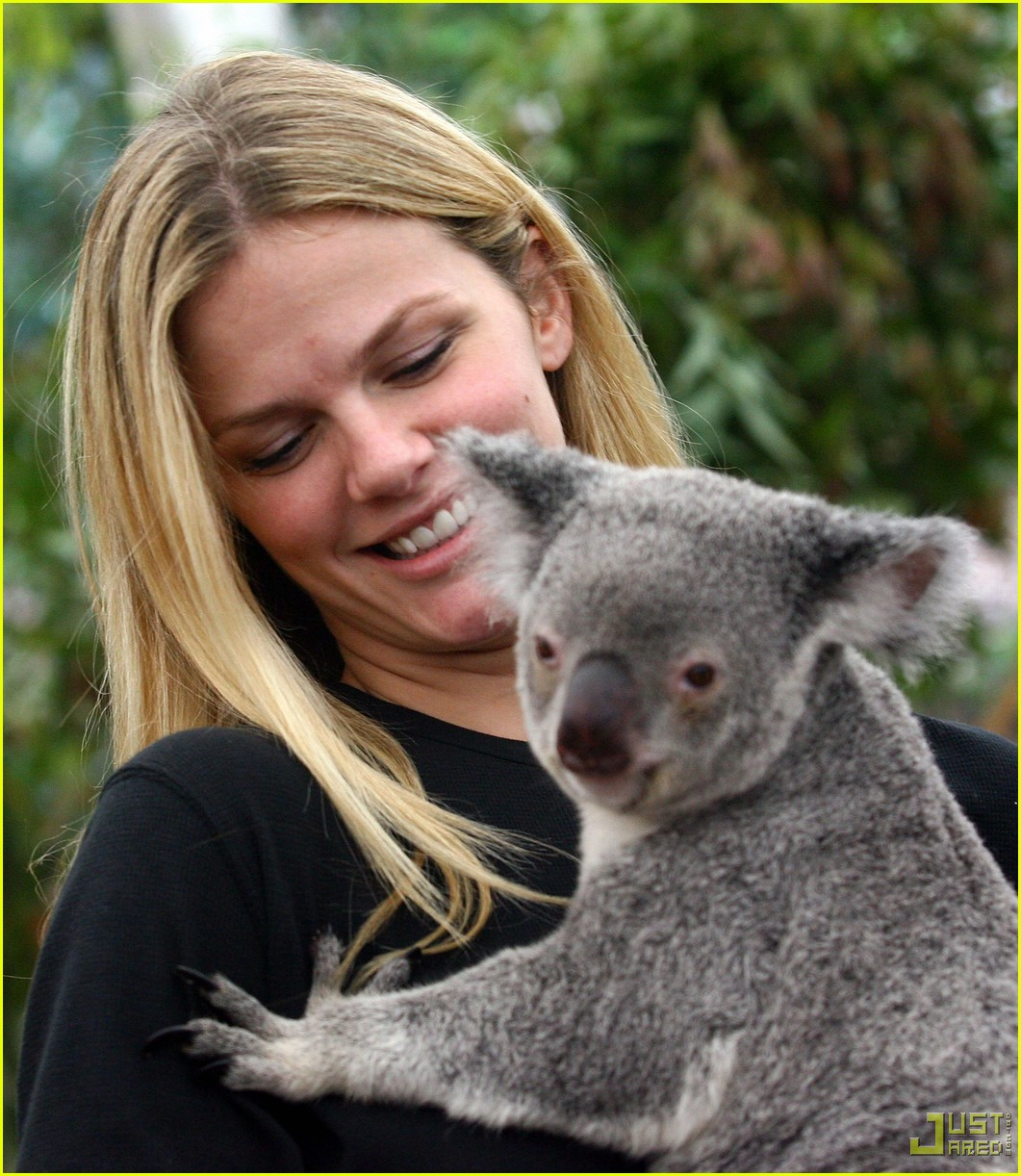 andy roddick brooklyn decker koala couple 06