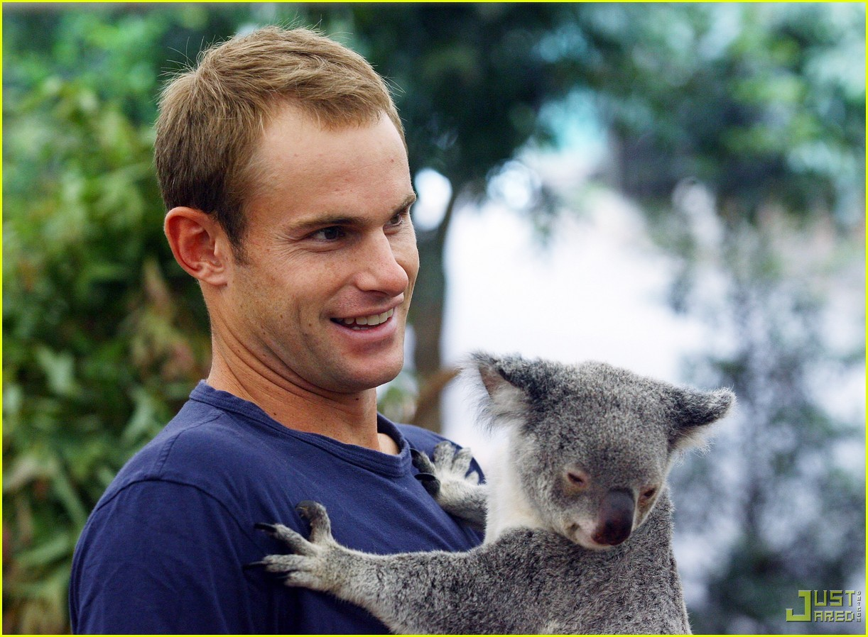 andy roddick brooklyn decker koala couple 07