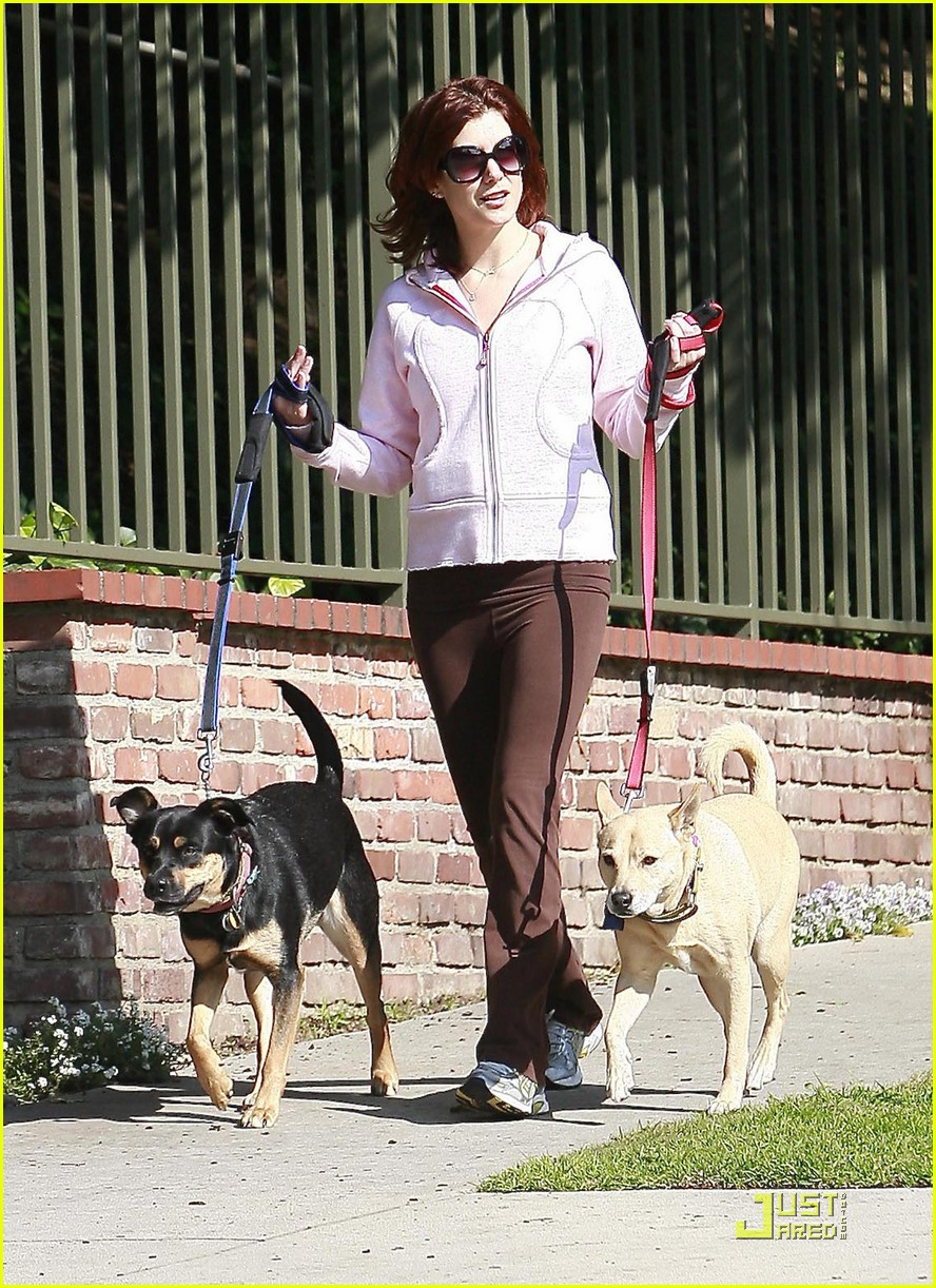 kate walsh dotes on her dogs 052413373