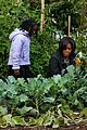 michelle obama white house kitchen garden fall harvest 05