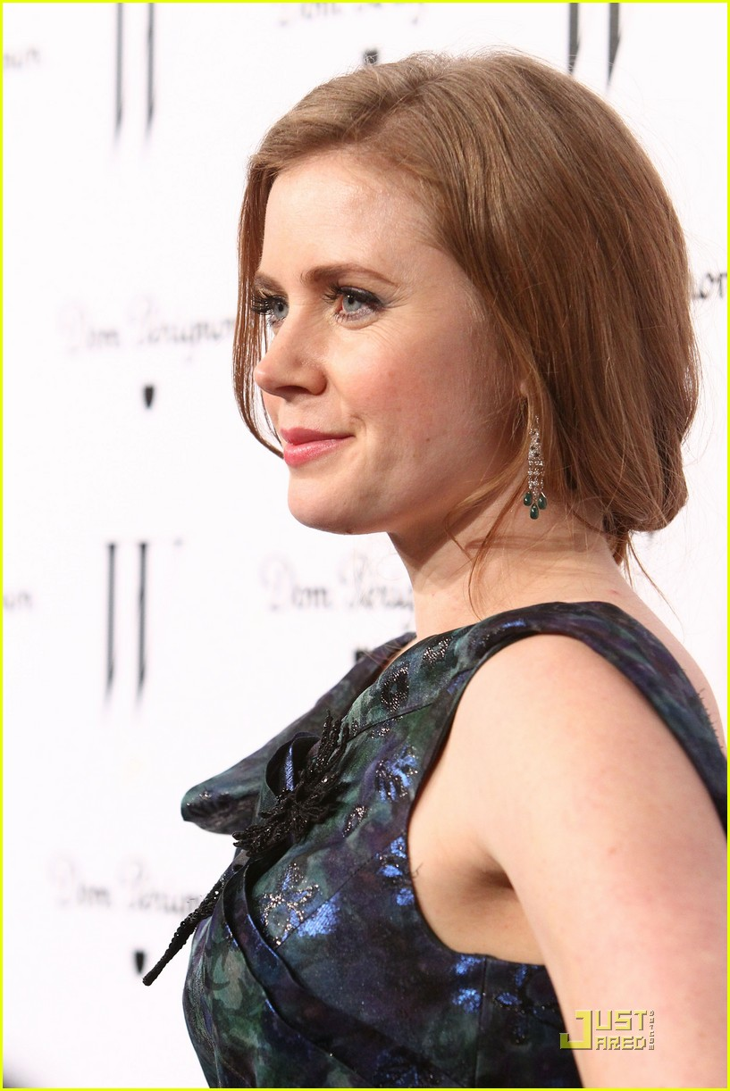 amy adams critics choice 122511225