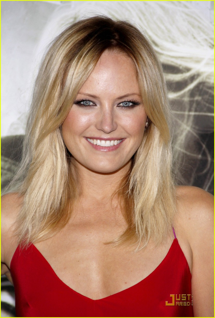 Malin Akerman The Lady In Red Malin Akerman