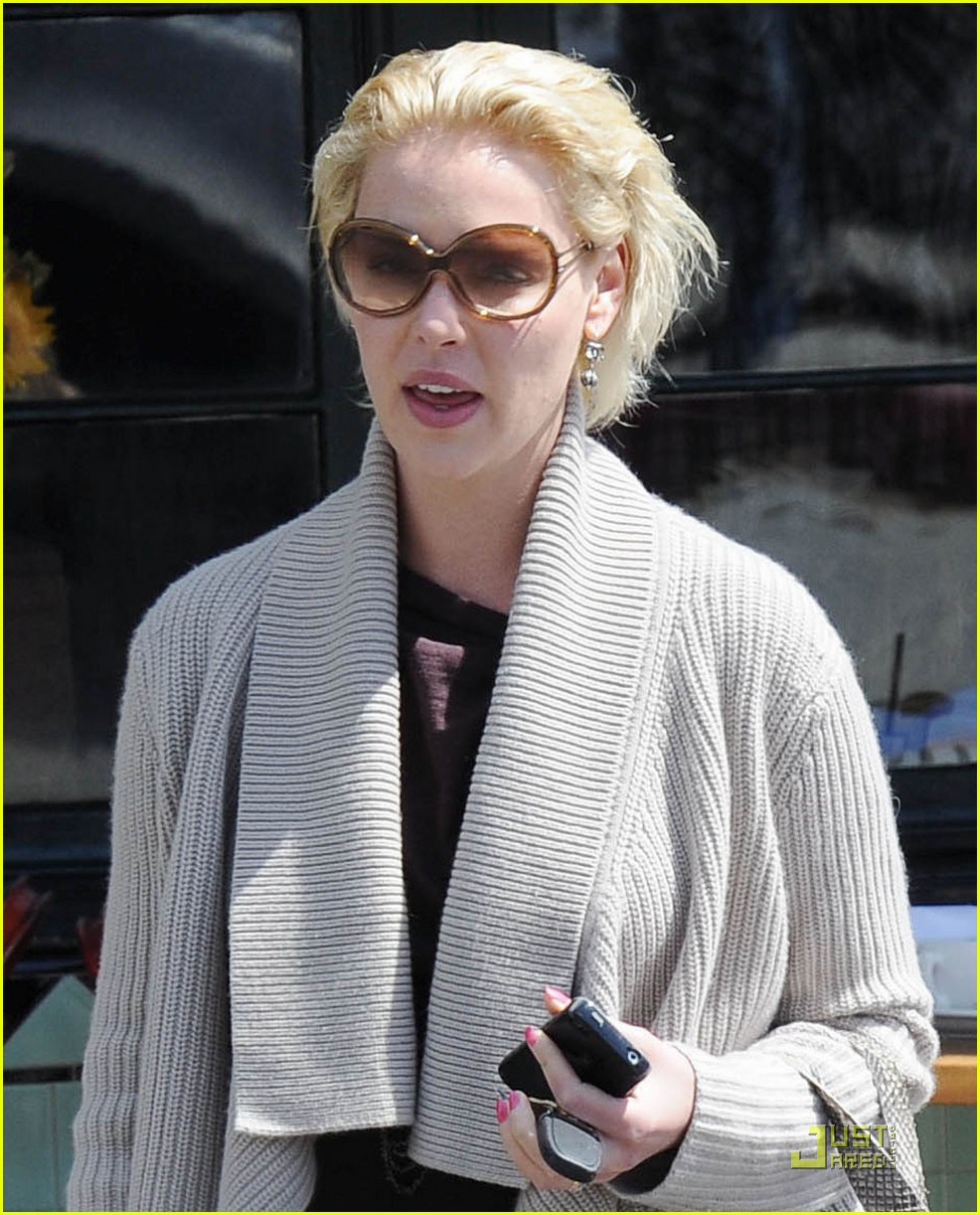 katherine heigl little doms date mom 032530392