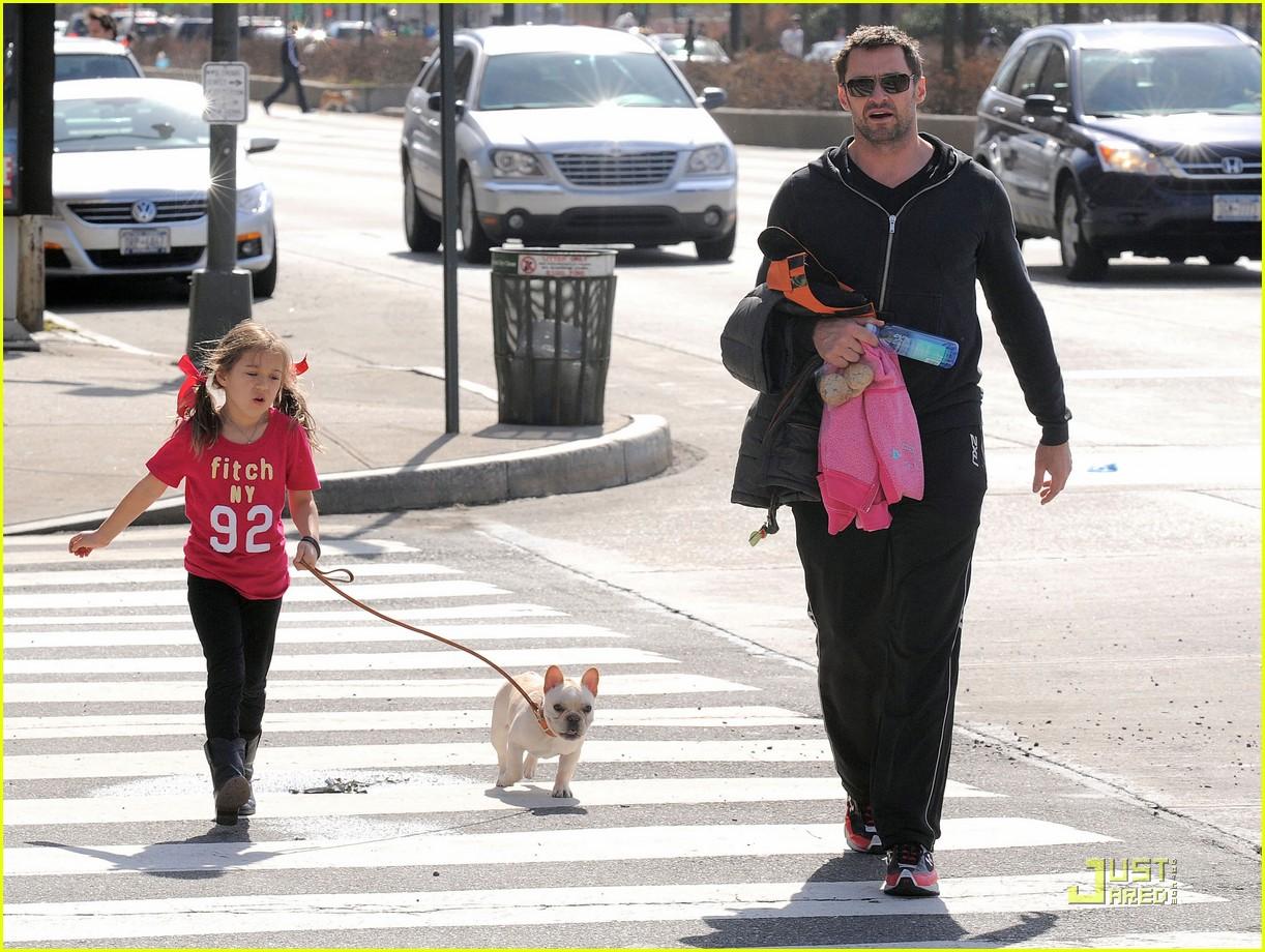 hugh jackman dog walk with ava 07