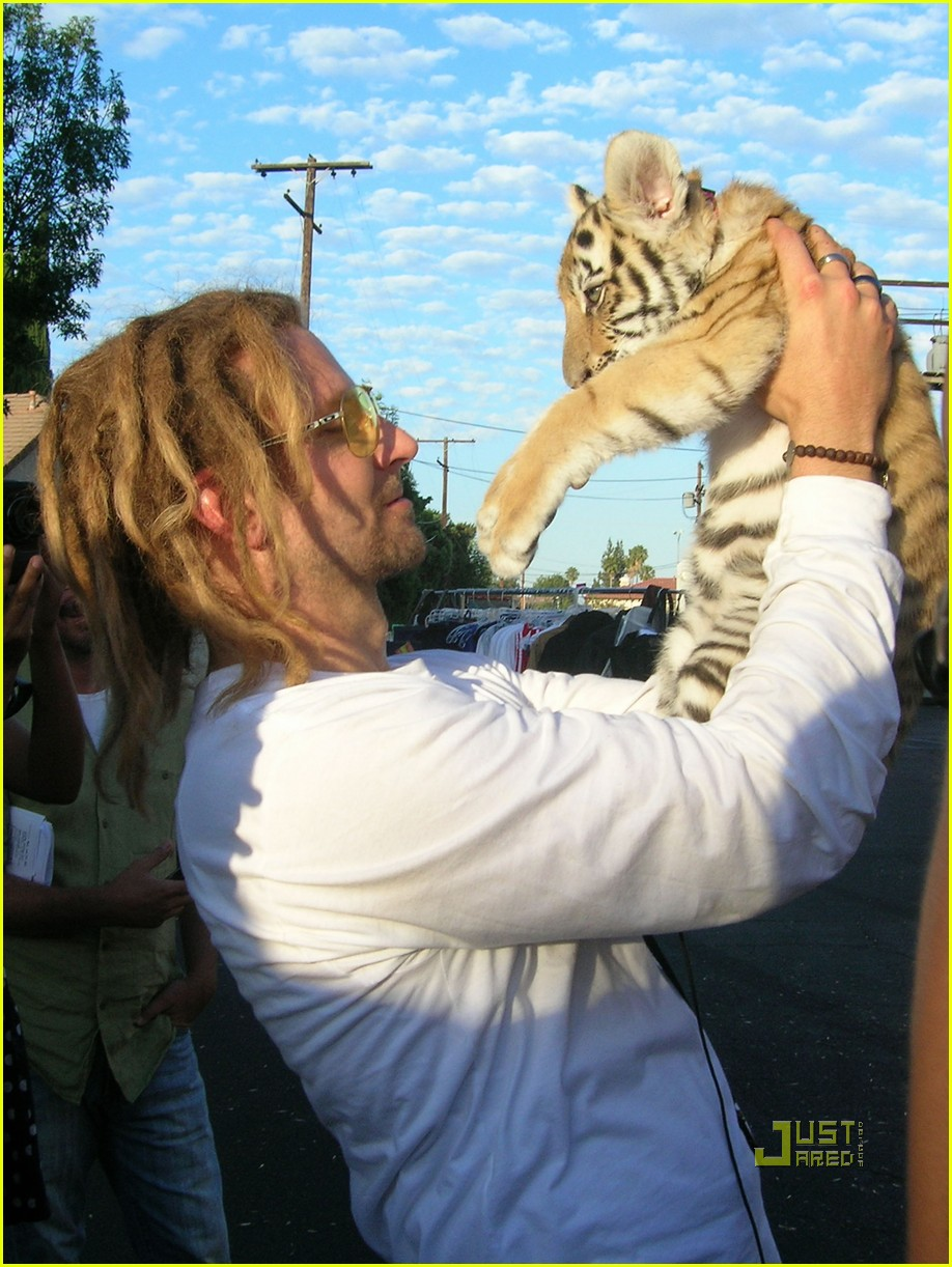bradley cooper dreadlocks tiger cub 042556714