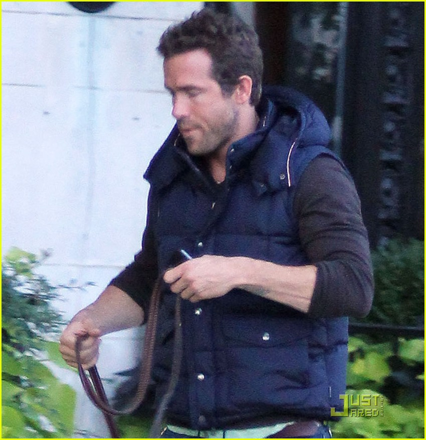 ryan reynolds walks dog 04