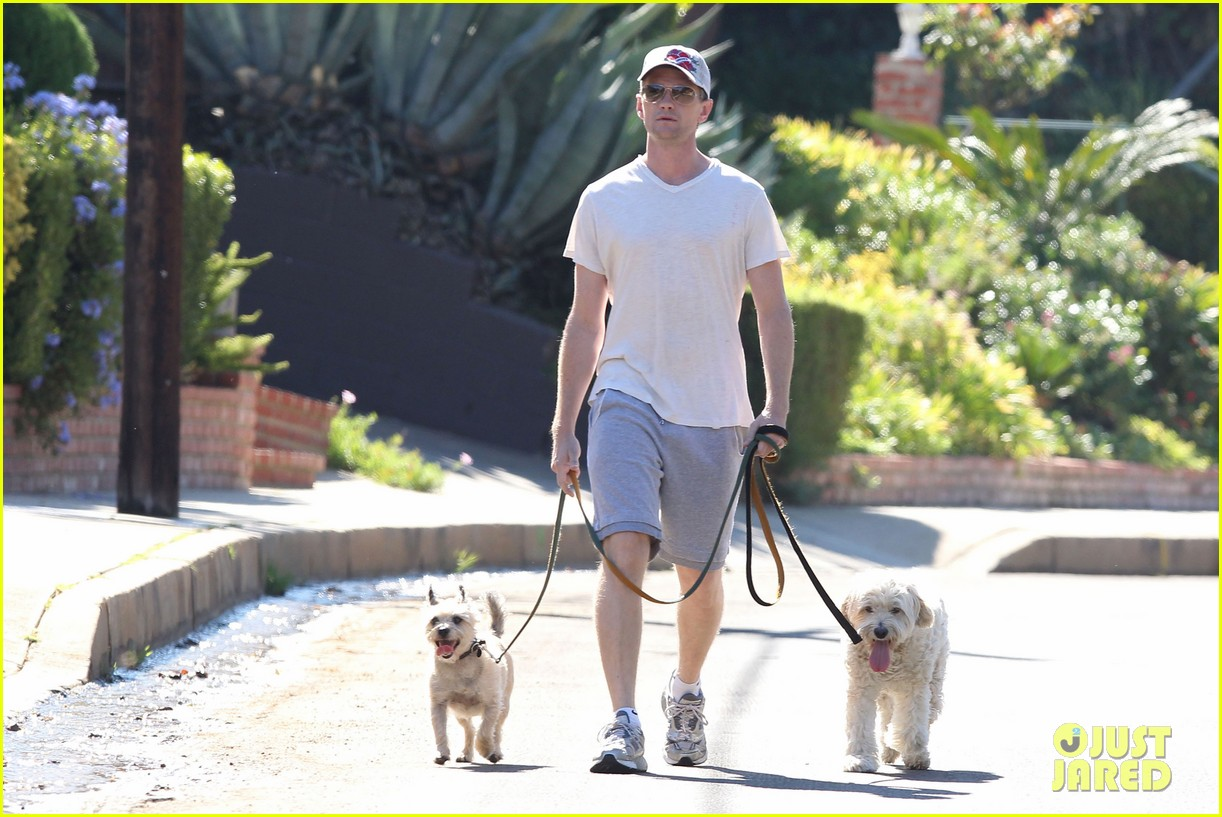 neil patrick harris dog walking 10