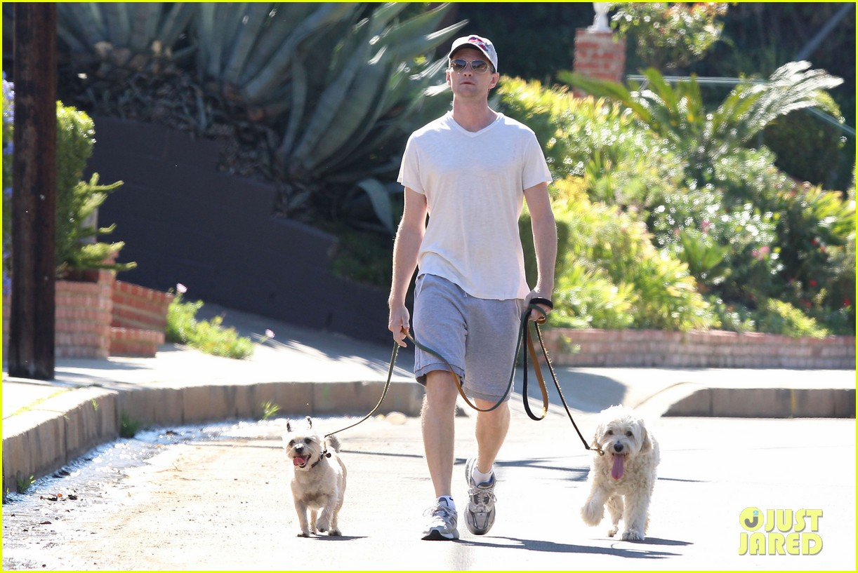 neil patrick harris dog walking 12