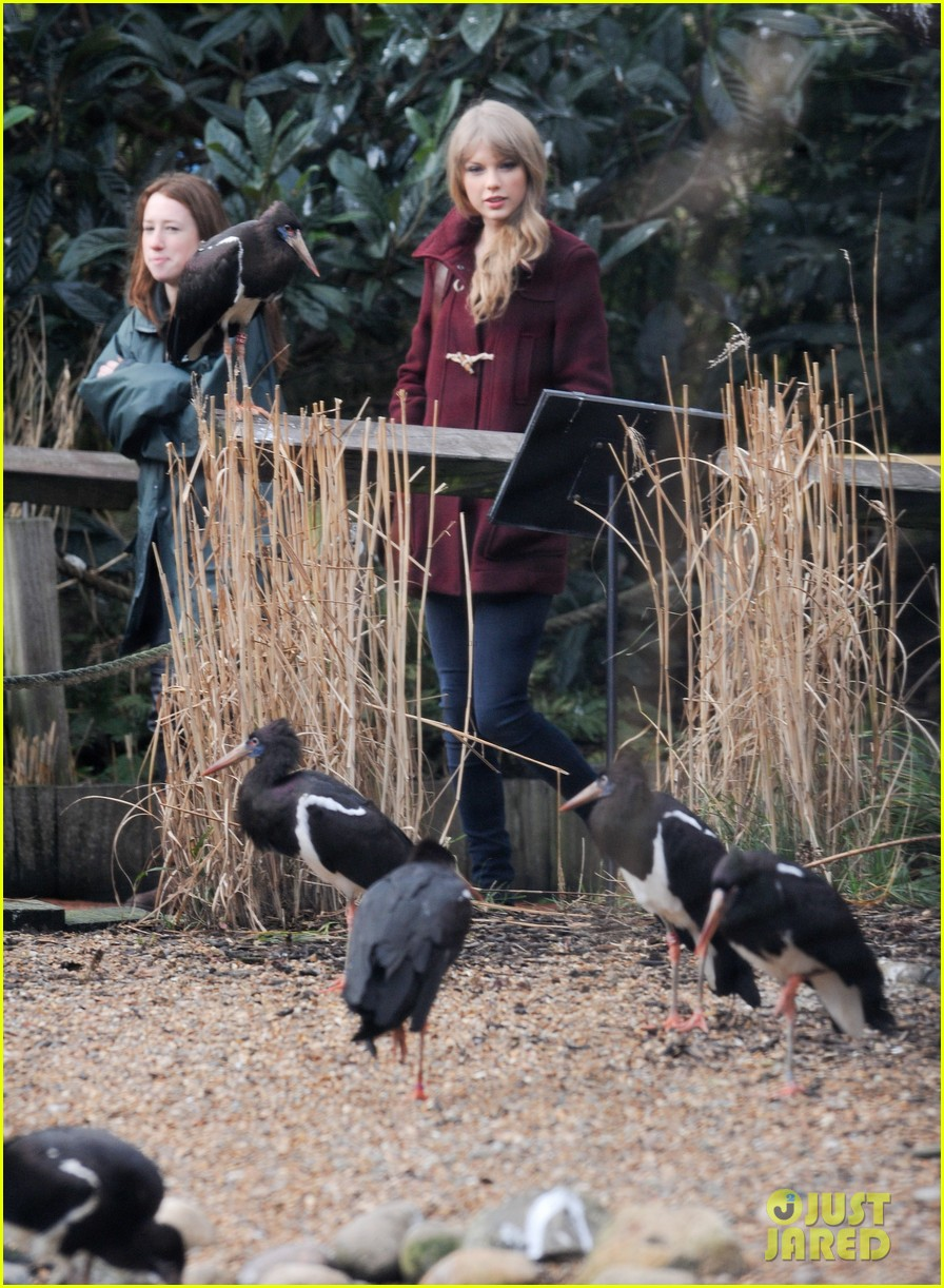 taylor swift london zoo 032621793
