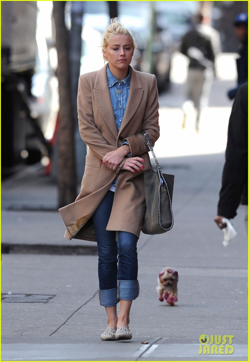 amber heard spy day with pink pooch 06