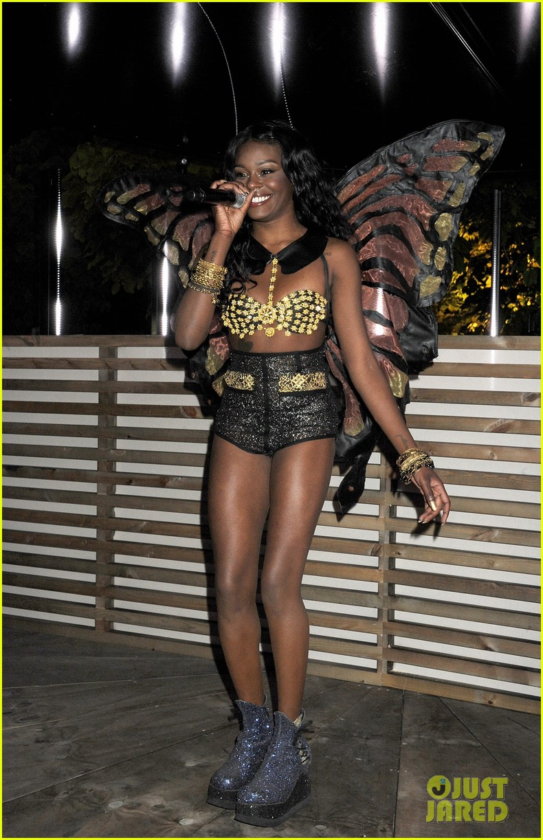 azealia banks serpentine summer gallery 052682143