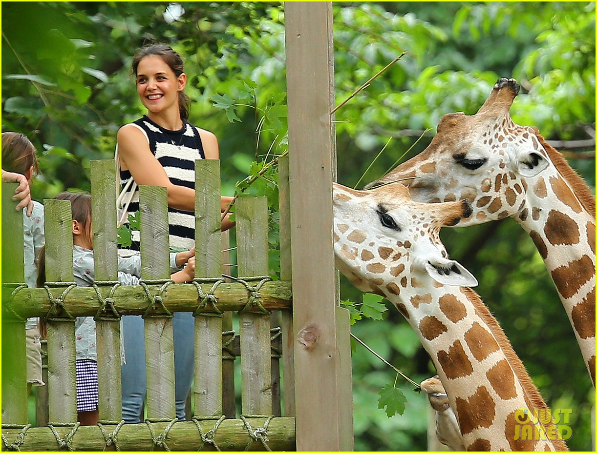 katie holmes suri feeds giraffes at bronx zoo 01