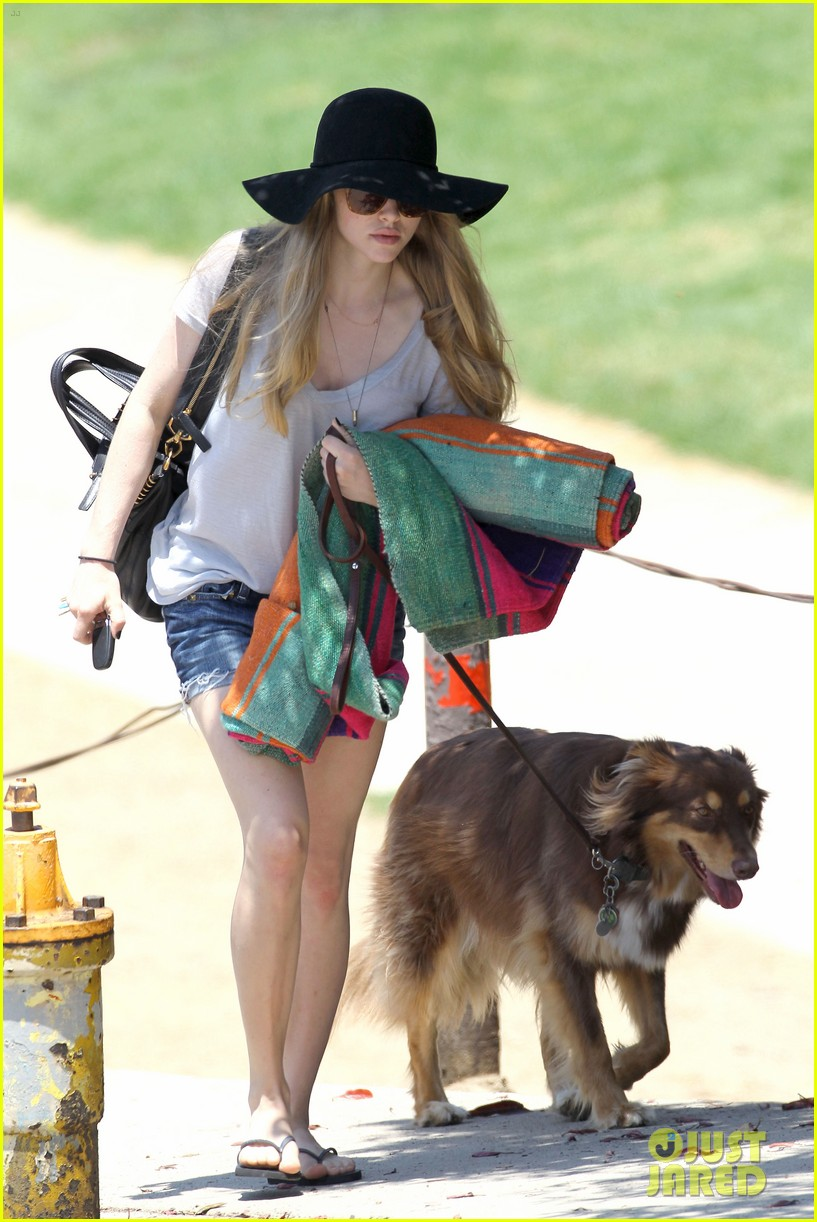 amanda seyfried park with flynn 052682815