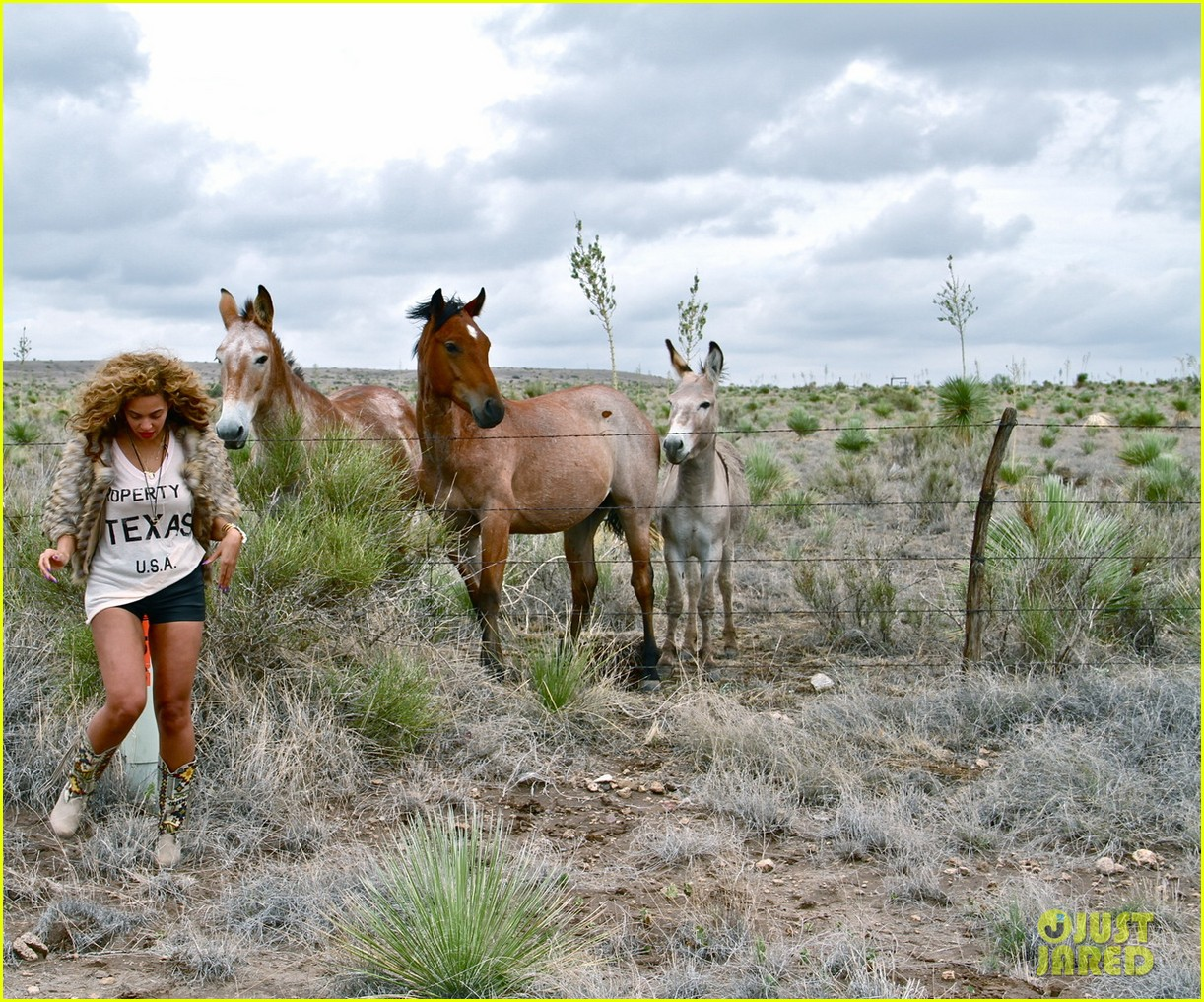beyonce new tumblr pictures 18