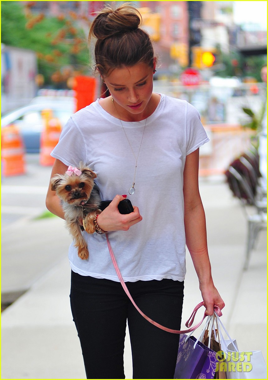 amber heard low profile in new york city 052709641
