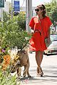 eva mendes beverly hills dog walker 09