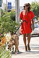 eva mendes beverly hills dog walker 11