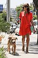 eva mendes beverly hills dog walker 13
