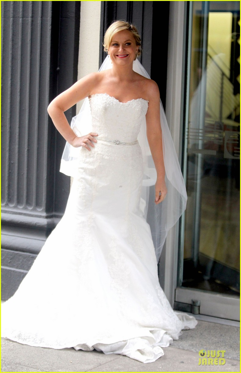 Amy Poehler Wedding Dress On They Came Together Set Photo 2735857
