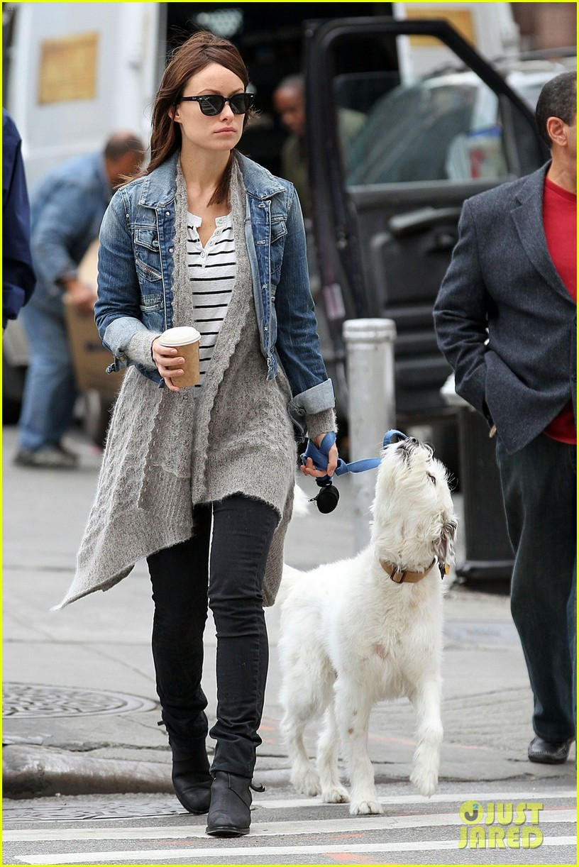 olivia wilde new york stroll with paco 09