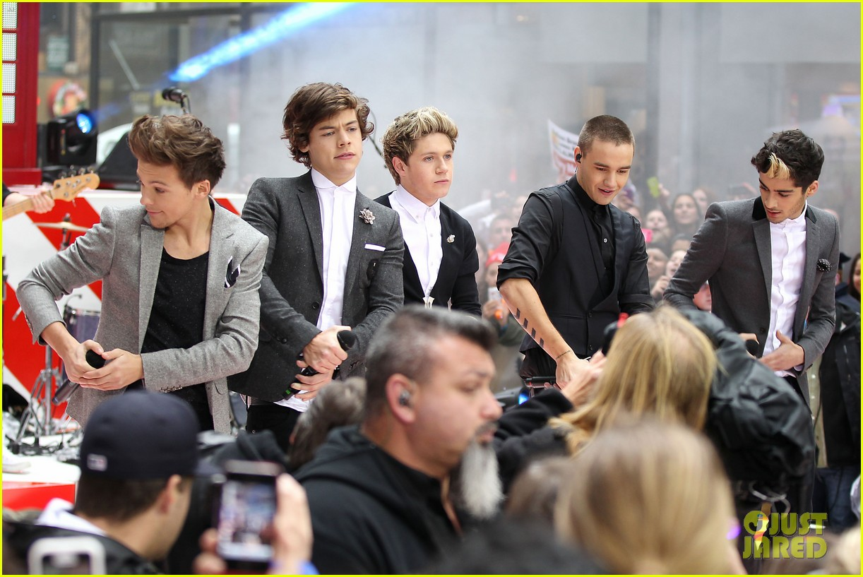 one direction announces 3d movie on today show 232756571