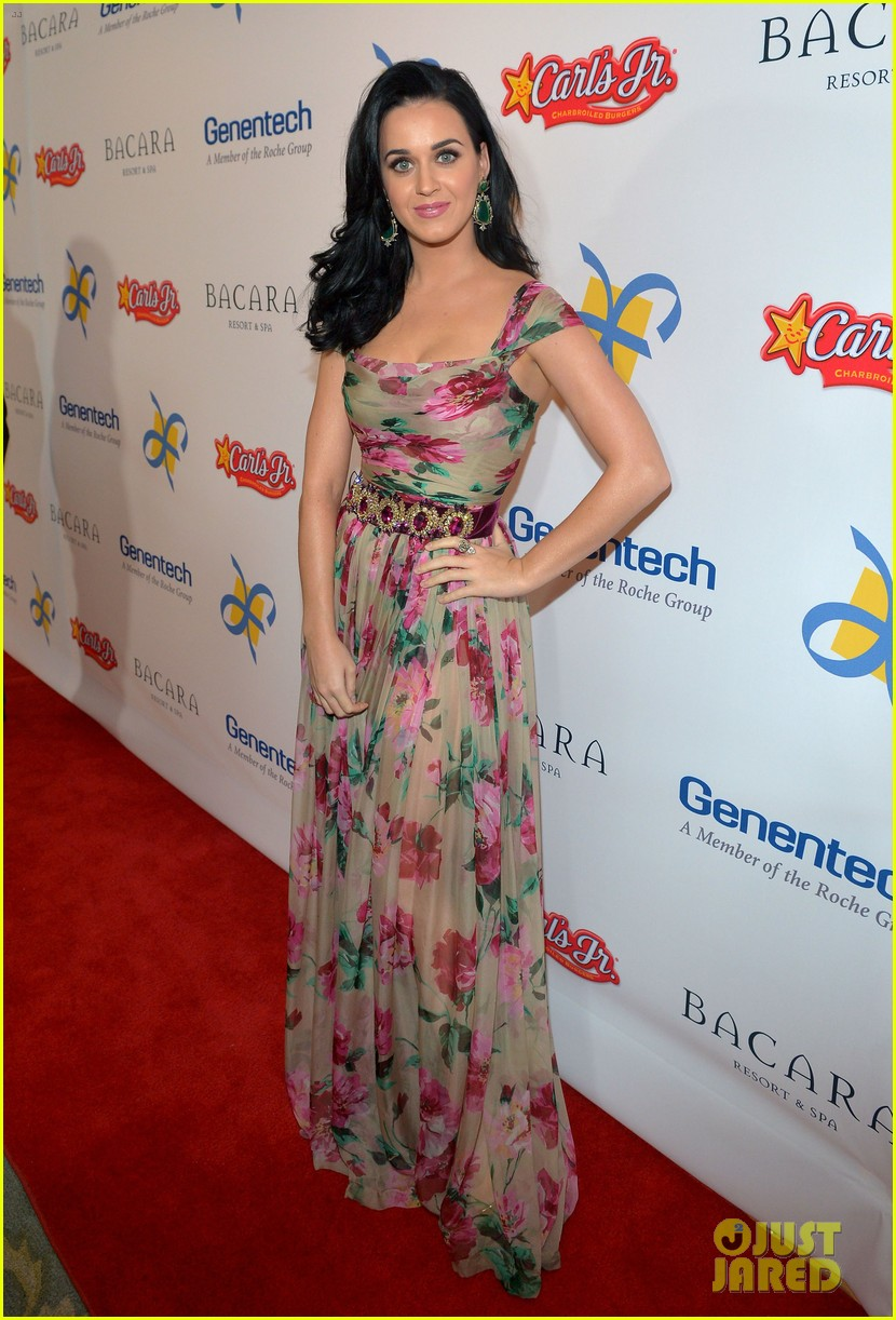 katy perry dream foundation celebration of dreams 012759244