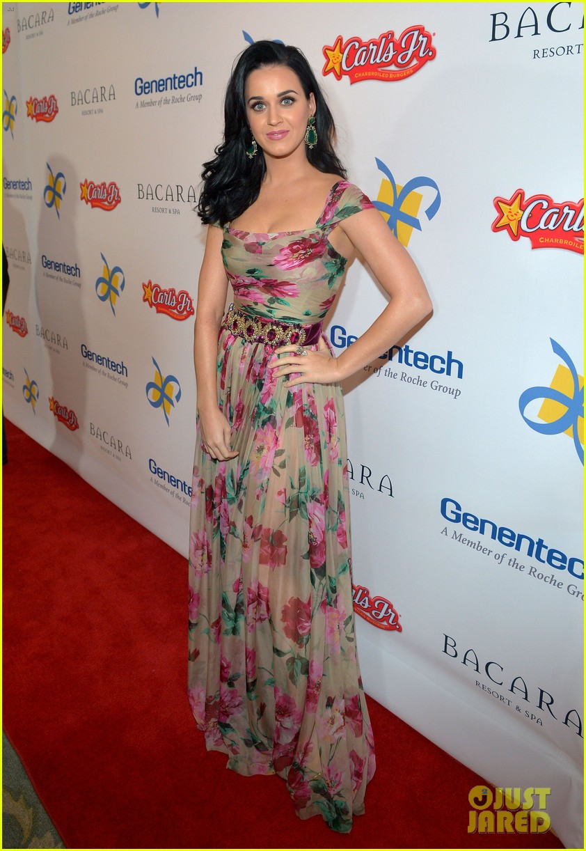 katy perry dream foundation celebration of dreams 08