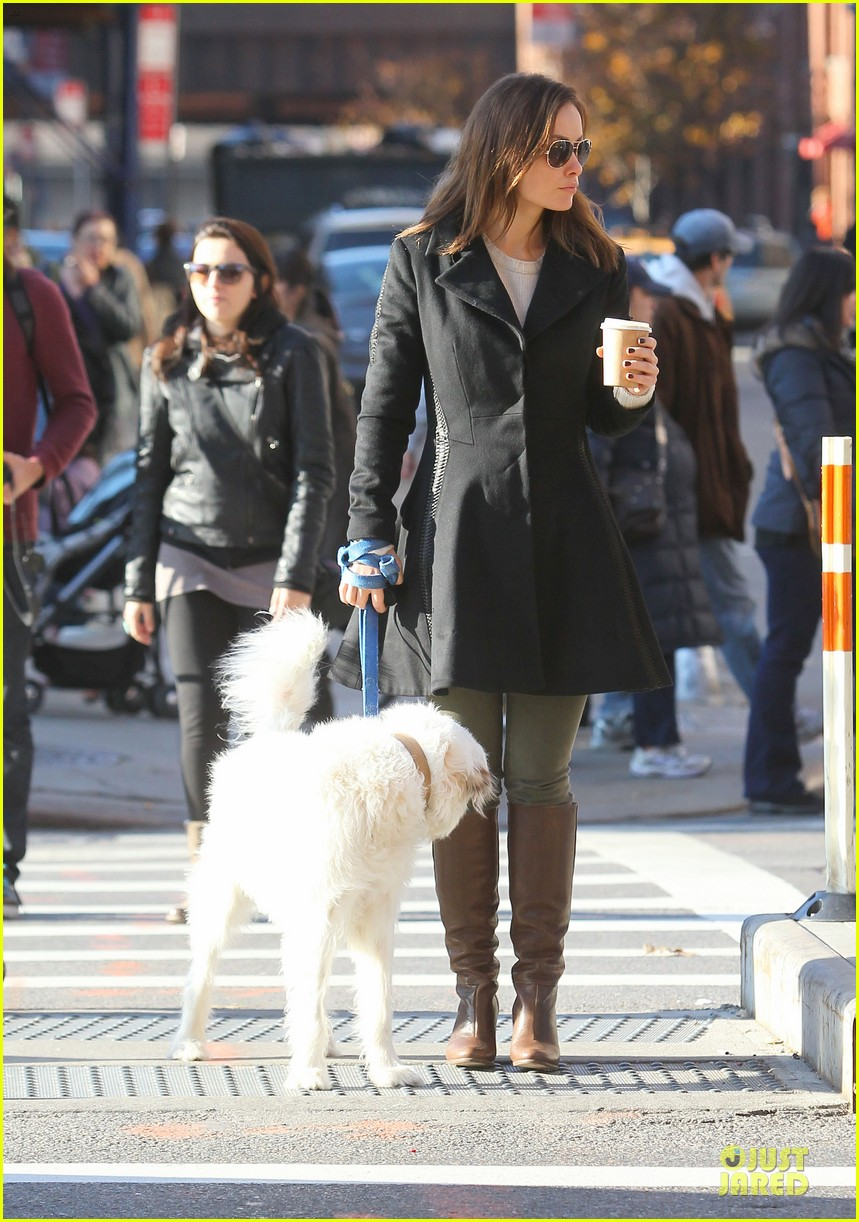 olivia wilde coffee run with paco 07