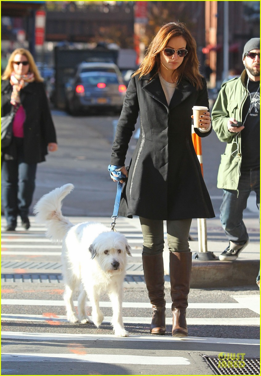 olivia wilde coffee run with paco 092759590