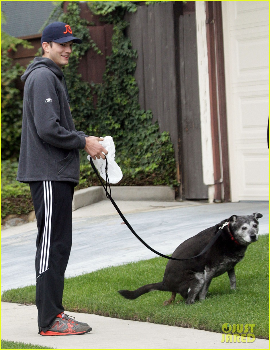 mila kunis ashton kutcher dog walk 18