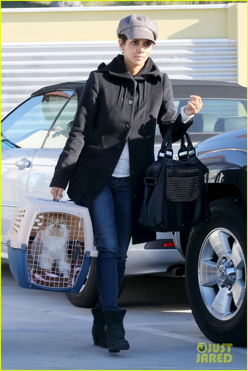 halle berry back at the vet with pet cat 01
