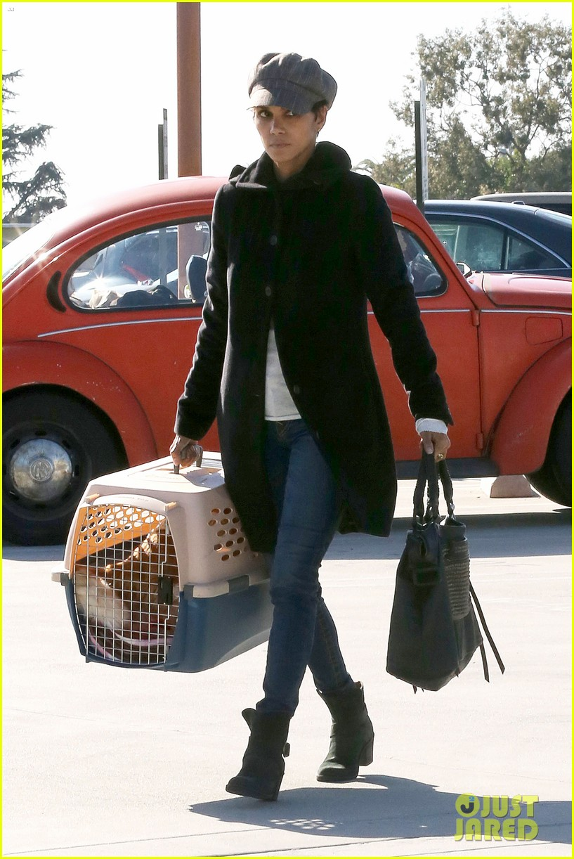 halle berry back at the vet with pet cat 05