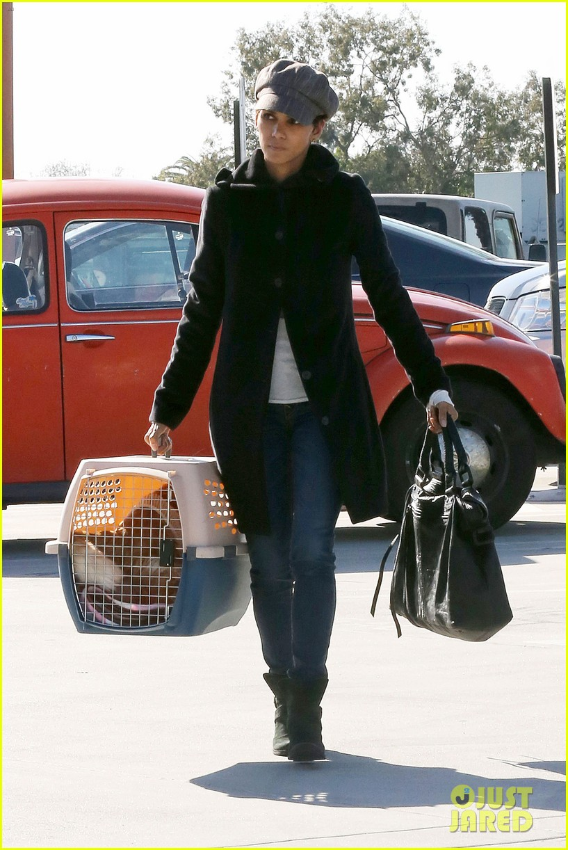 halle berry back at the vet with pet cat 06